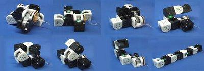 The M-TRAN Modular Transformer