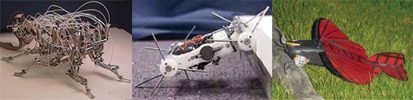 Roger Quinn - Insect-like robots