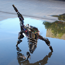 Talking Robot Podcast - A starfish robot resilient to damage through continuous self modeling