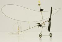 Robotic Microflyer